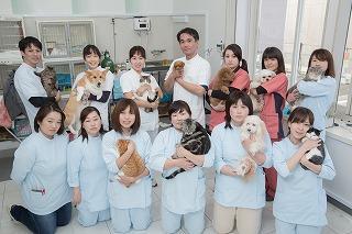獣医師・動物看護士・トリマー募集