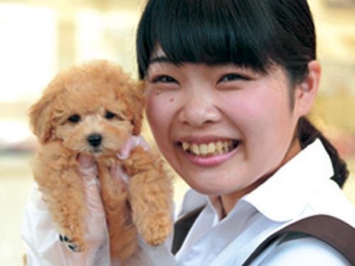 PetPlus松本店の幸せ配達人♪ペットショップスタッフ募集