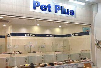 PetPlus新潟南店のペットショップスタッフ募集