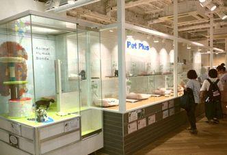PetPlus神戸三宮店のペットショップスタッフ募集