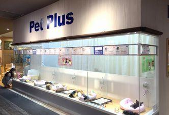 PetPlus鎌取店の幸せ配達人♪ペットショップスタッフ募集