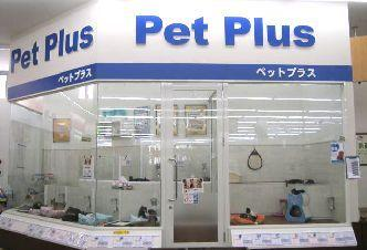 PetPlus 板橋小豆沢店のペットショップスタッフ募集