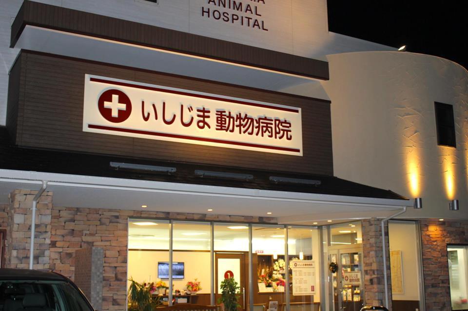 いしじま動物病院