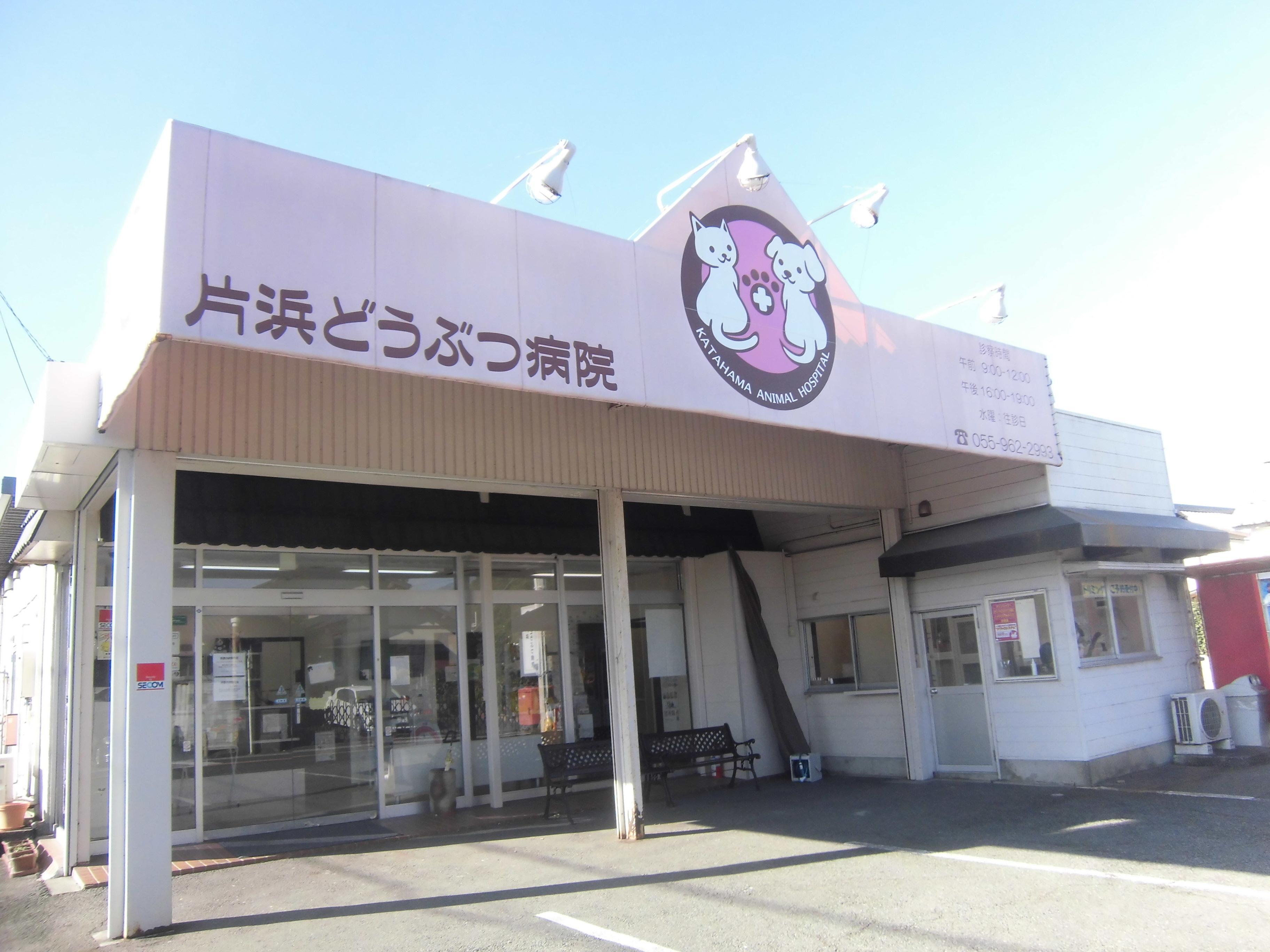 スタッフ急募!!