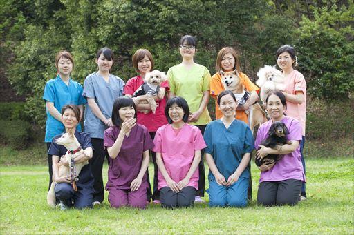 獣医師募集! 多摩市のこうご動物病院