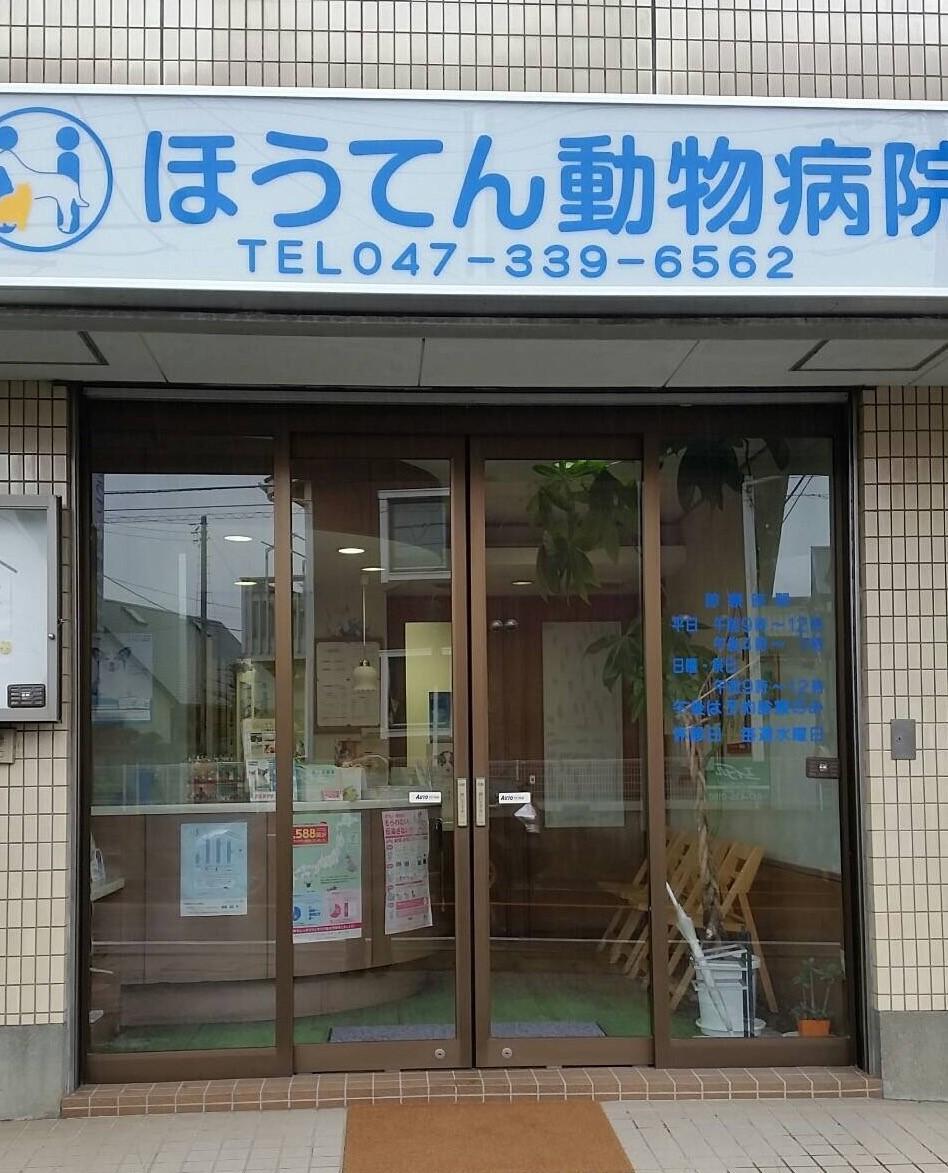 【急募】動物看護士複数名募集!船橋法典駅より徒歩5分