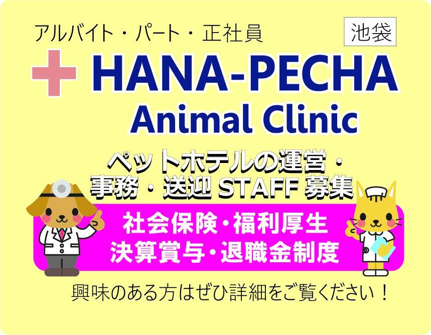 【池袋】ペットホテル・送迎・事務作業のお手伝い