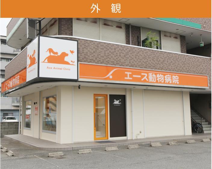 ☆香芝市・エース動物病院☆パートタイムトリマーさん募集!