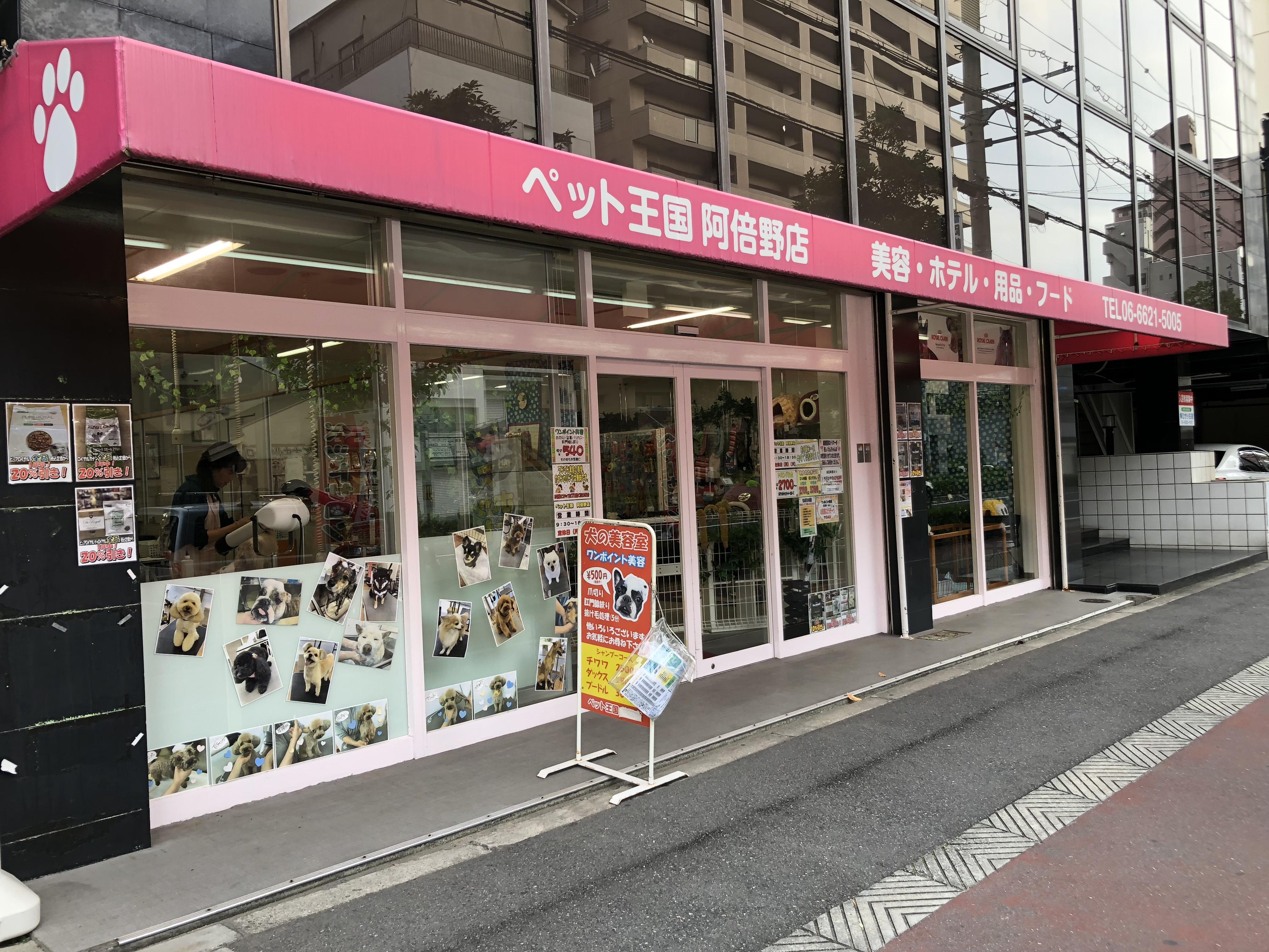 阿倍野区トリマーさん募集!!