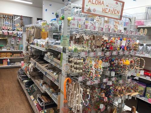 店内には鳥用品が並んでいます。
