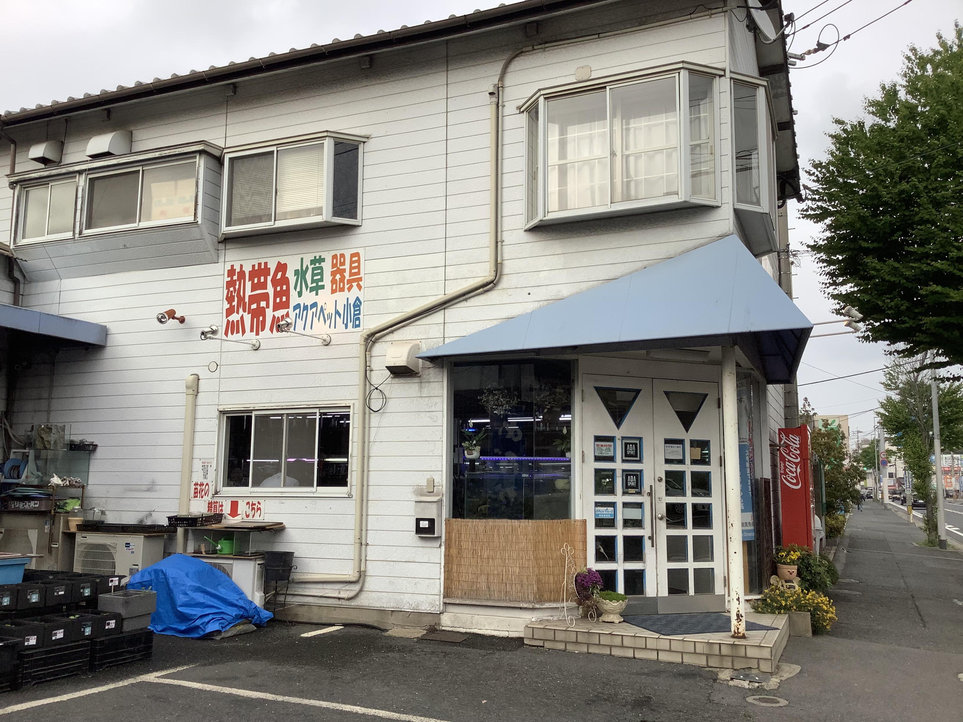 熱帯魚店の正社員(アクアペット小倉)