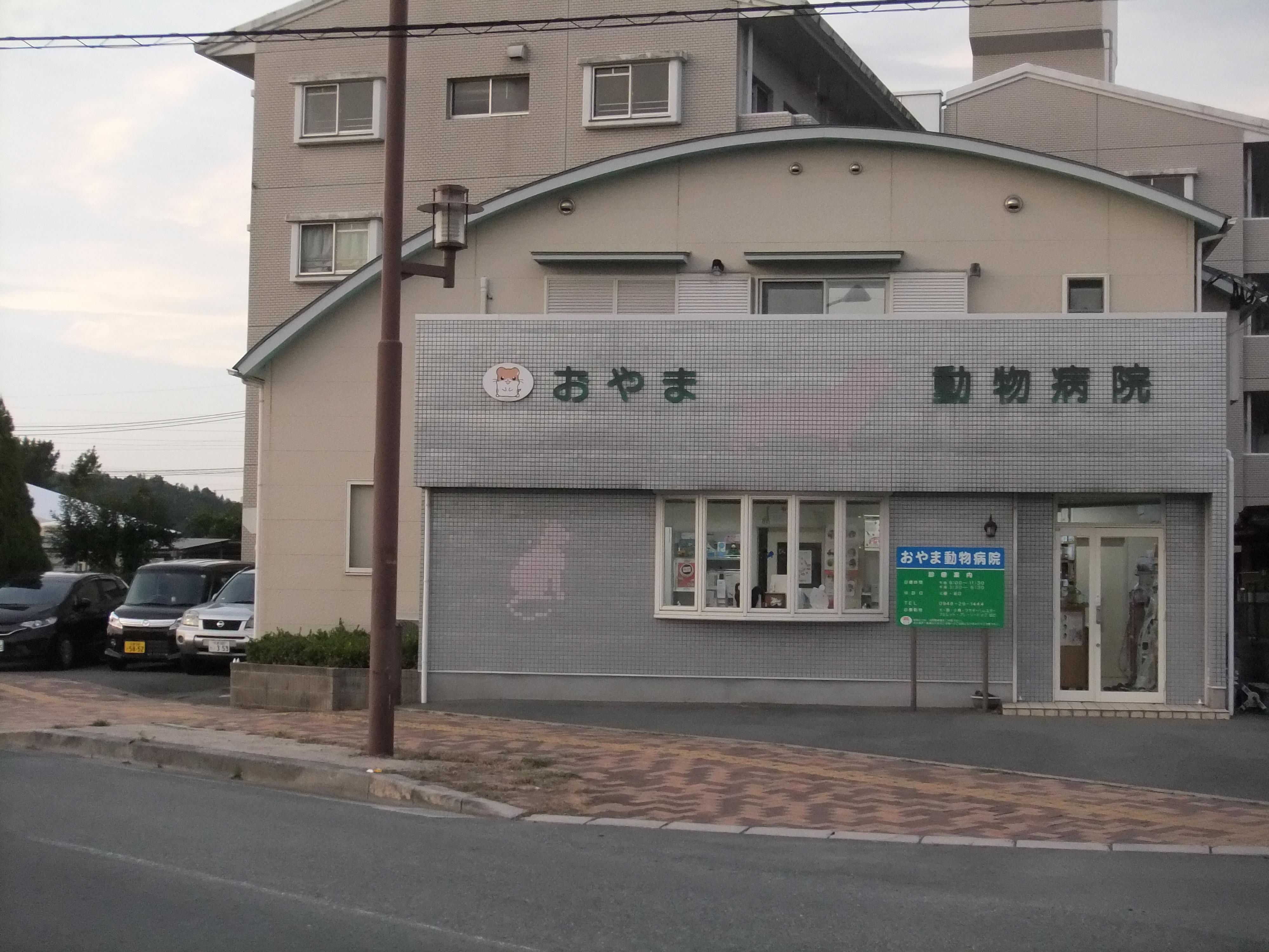 福岡県 飯塚市 動物看護士募集 おやま動物病院