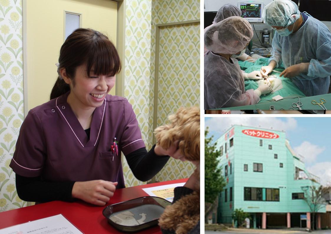 熊本県 動物看護師募集